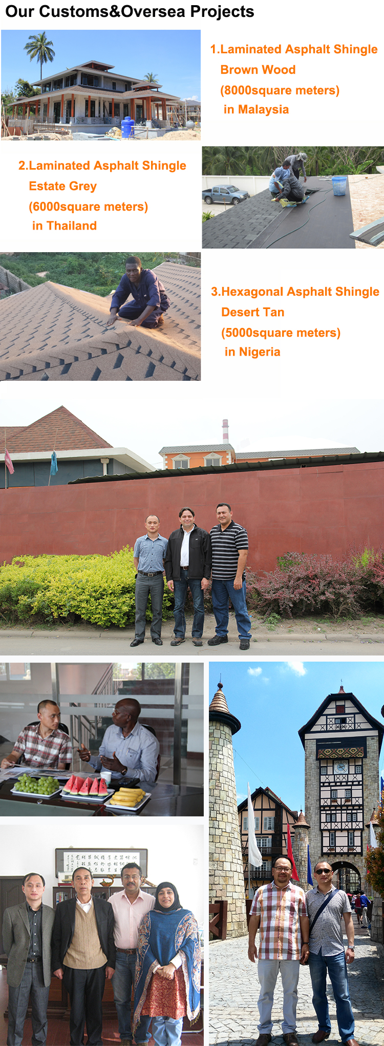 Our Customer&Oversea Projects