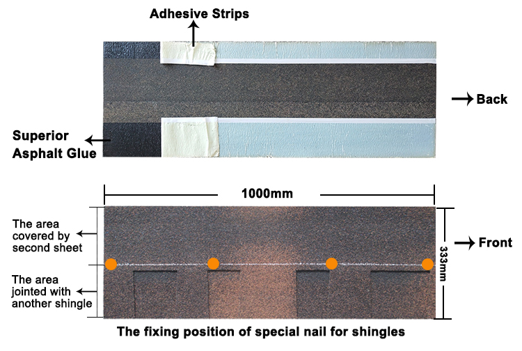 laminated shingle nail